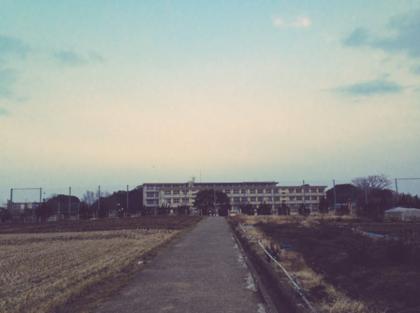 スクリーンショット (29).png